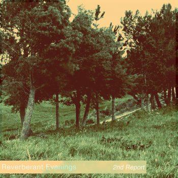 Reverberant Evenings - 2nd Report