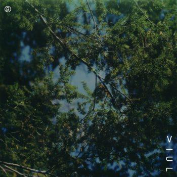 Viul - Outside the Dreamworld